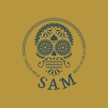 Logo-Sam-Fondo-Chiaro